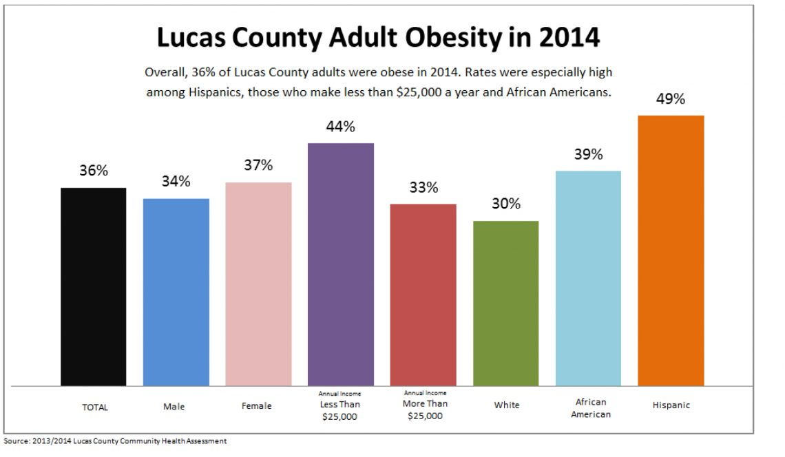 Obesity on the Rise - Healthy Lucas County